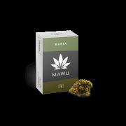 <p>Maria 2g MAWU</p>