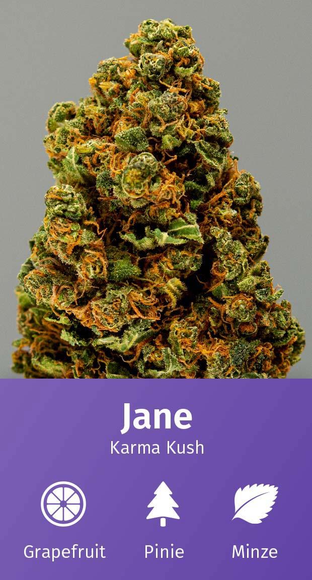 Blütentee Jane